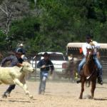 FAA Ranch Rodeo 2013 PT 2